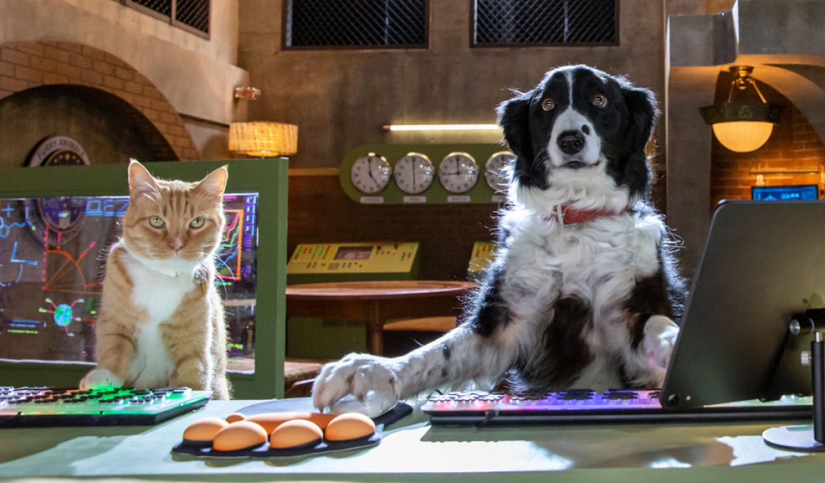 Cats & Dogs 3