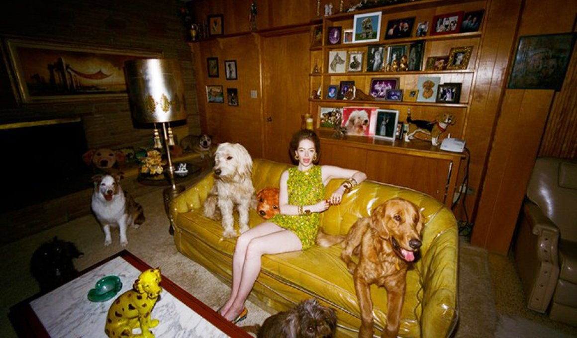 emma stone crazy dog ldy lanthimos