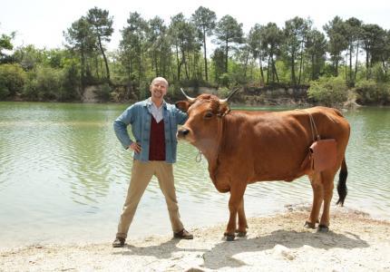 Μια αγελάδα στο Παρίσι