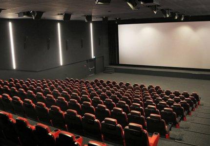 Έρευνα: Η επόμενη ημέρα του ελληνικού σινεμά - Οι δημιουργοί