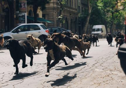 Θεσσαλονίκη 14 - Παρασκευή 31/10: Το MOVE IT προτείνει