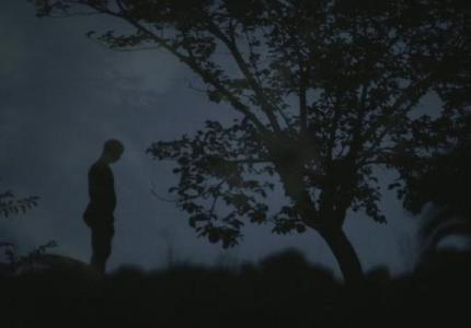 "Berlinale 14: Το ""Washingtonia"" της Κωνσταντίνας Κοτζαμάνη για μικρού μήκους"